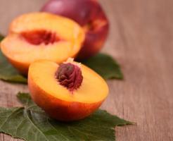 ミナミヌマエビ 内臓 オレンジ