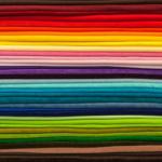 ミナミヌマエビの色は変化する!?色の固定は難しい